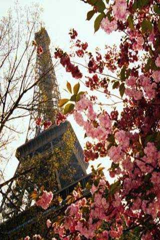 Primavara in Paris